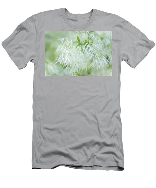 White Fringetree Men's T-Shirt (Athletic Fit)