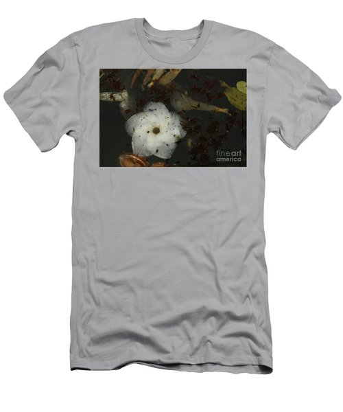 White Hawaiian Flower In The Pond Men's T-Shirt (Athletic Fit)