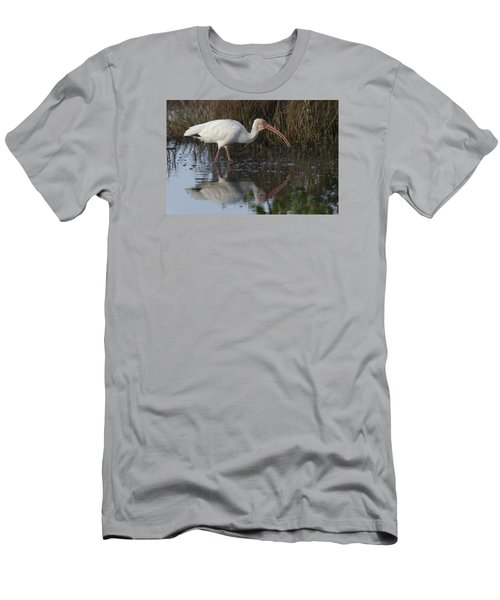 White Ibis Feeding Men's T-Shirt (Athletic Fit)