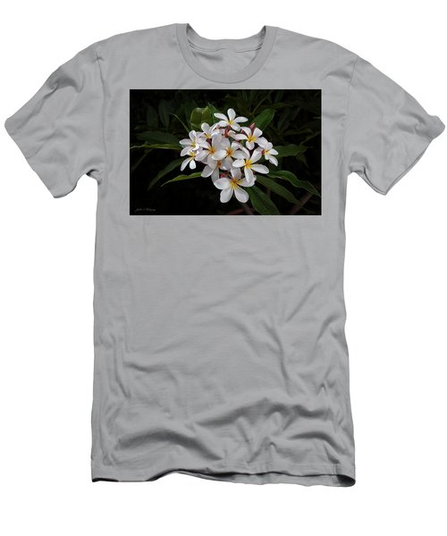 White Plumerias In Bloom Men's T-Shirt (Athletic Fit)