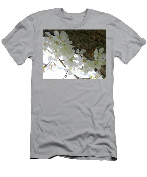 Dogwood Branch Men's T-Shirt (Athletic Fit)