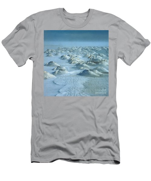Whooper Swans In Snow Men's T-Shirt (Athletic Fit)