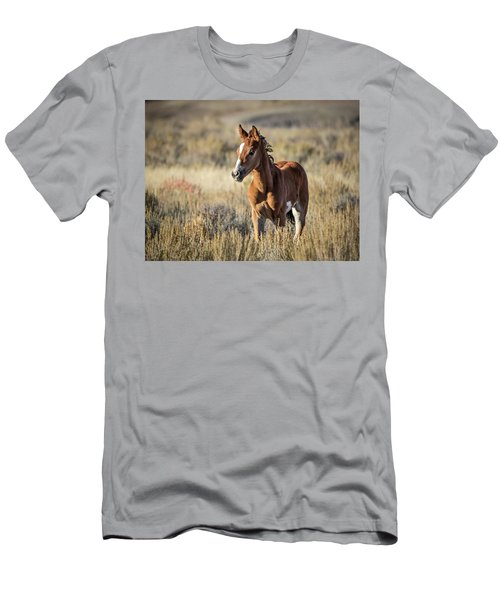 Wild Colt In Sand Wash Basin - Northwest Colorado Men's T-Shirt (Athletic Fit)