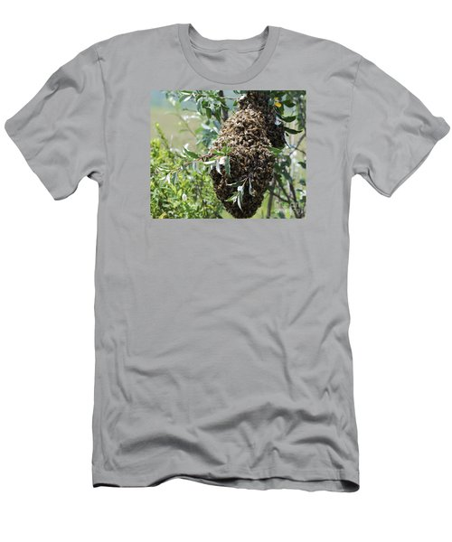 Wild Honey Bees Men's T-Shirt (Slim Fit) by Randy Bodkins