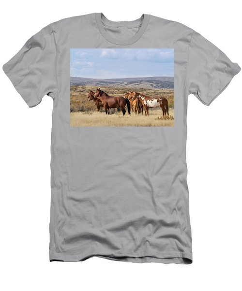Wild Mustang Family Band In Sand Wash Basin Men's T-Shirt (Athletic Fit)
