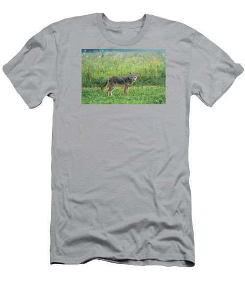 Men's T-Shirt (Slim Fit) featuring the photograph Wiley by Jessica Brawley