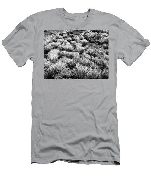 Windblown Grass Men's T-Shirt (Athletic Fit)