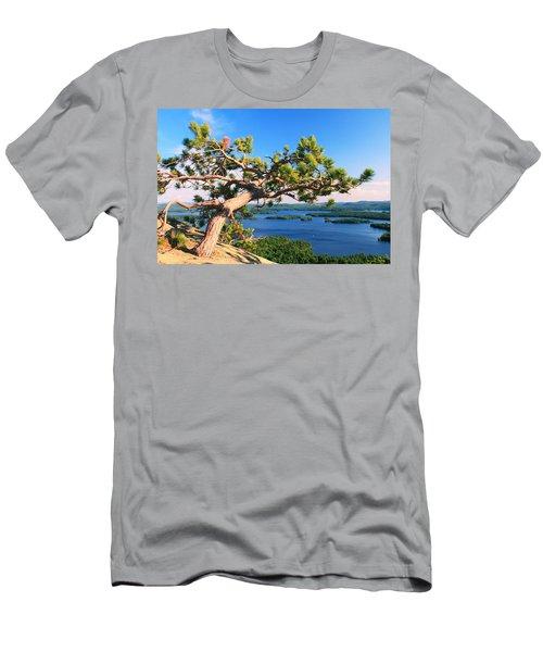Windswept Pine On Rattlesnake Mountain Men's T-Shirt (Athletic Fit)