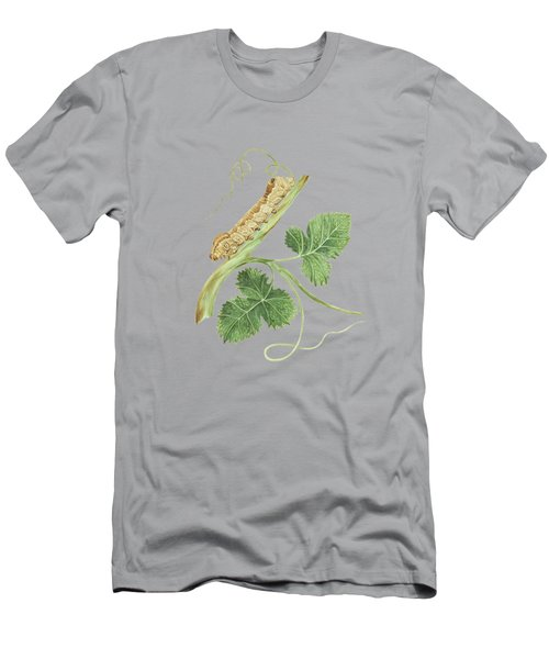 Wine Branch With The Metamorphosis Of A Future Female Butterfly By Cornelis Markee 1763 Men's T-Shirt (Athletic Fit)