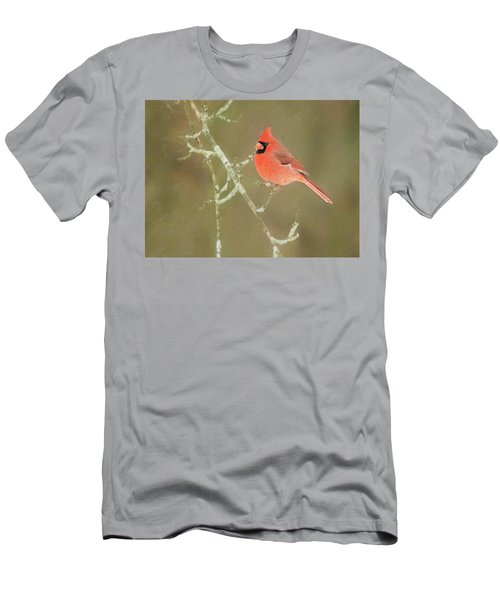 Winter Cardinal Men's T-Shirt (Athletic Fit)