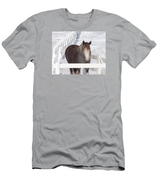 Winter Horse Men's T-Shirt (Slim Fit) by Debbie Stahre