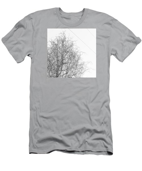 Winter Trees Men's T-Shirt (Athletic Fit)