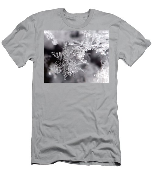 Winter's Beauty Men's T-Shirt (Slim Fit) by Lauren Radke