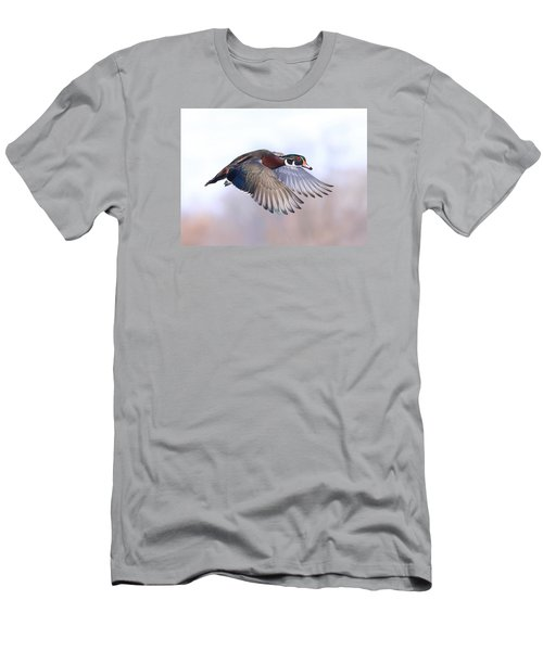 Wood Duck In Flight Men's T-Shirt (Athletic Fit)