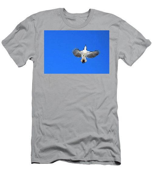 Woodpecker In-flight Men's T-Shirt (Athletic Fit)