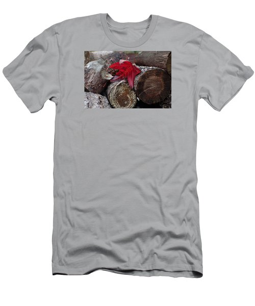 Woodpile Beauty Men's T-Shirt (Slim Fit) by Adria Trail