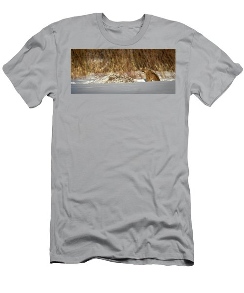 Yampa Glare  Men's T-Shirt (Athletic Fit)