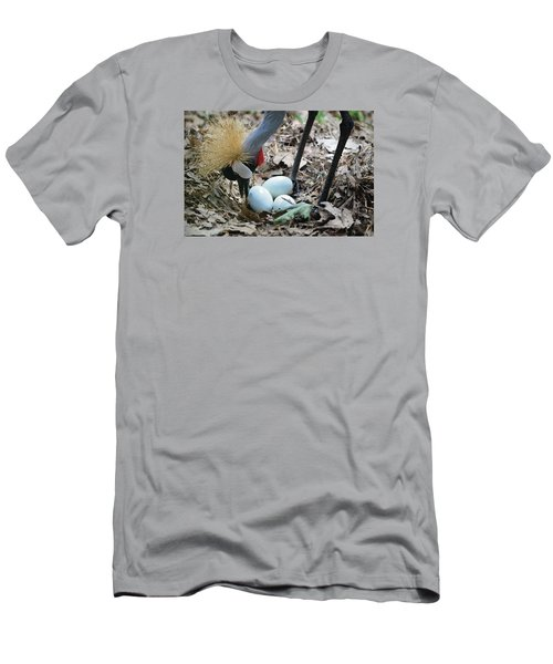 Yellow Crowned Crane Tending To Her Eggs Men's T-Shirt (Athletic Fit)
