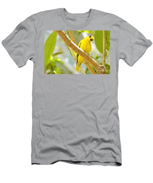 You Looking At Me? Men's T-Shirt (Athletic Fit)
