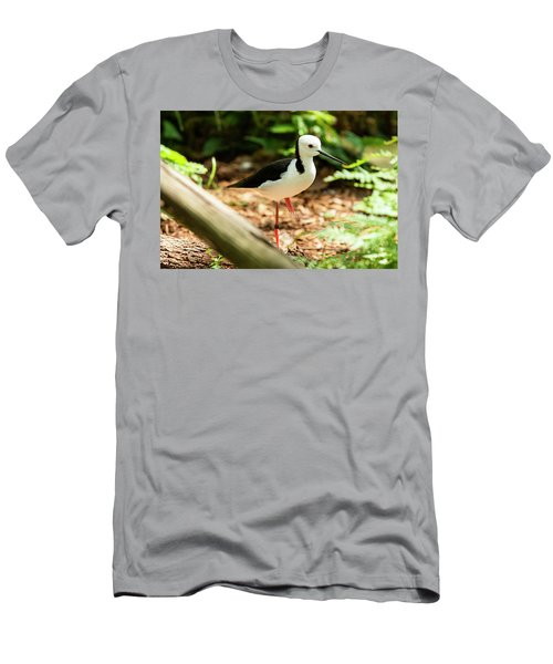 Men's T-Shirt (Athletic Fit) featuring the photograph Black-winged Stilt by Rob D Imagery
