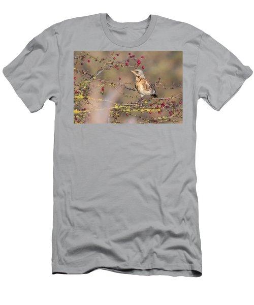 Fieldfare Men's T-Shirt (Athletic Fit)