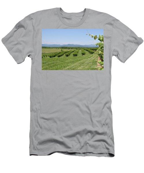 Vineyard Men's T-Shirt (Athletic Fit)