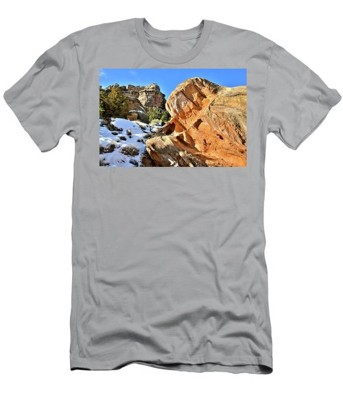 Colorful Colorado National Monument Men's T-Shirt (Athletic Fit)