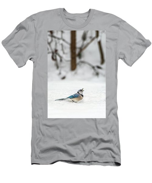 2019 First Snow Fall Men's T-Shirt (Athletic Fit)