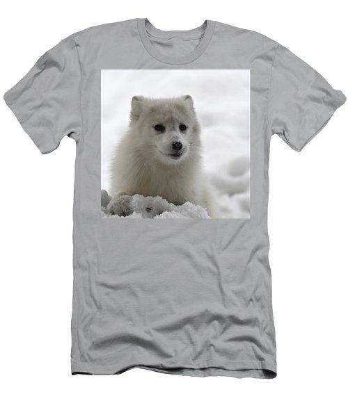 Artic Fox Men's T-Shirt (Athletic Fit)