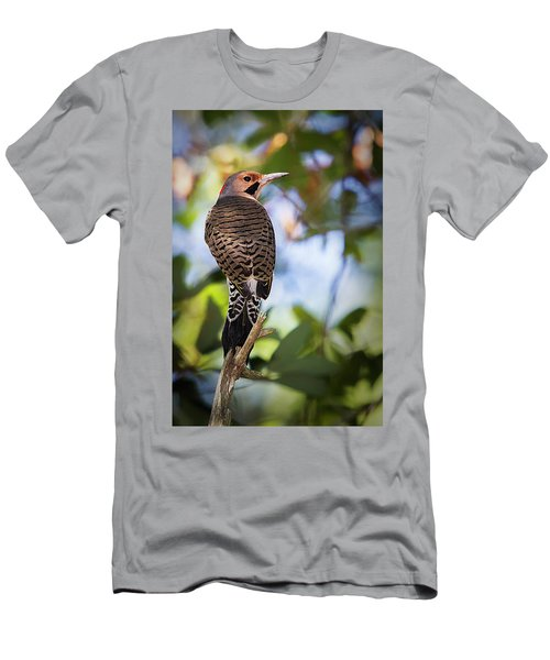 A Northern Flicker Men's T-Shirt (Athletic Fit)