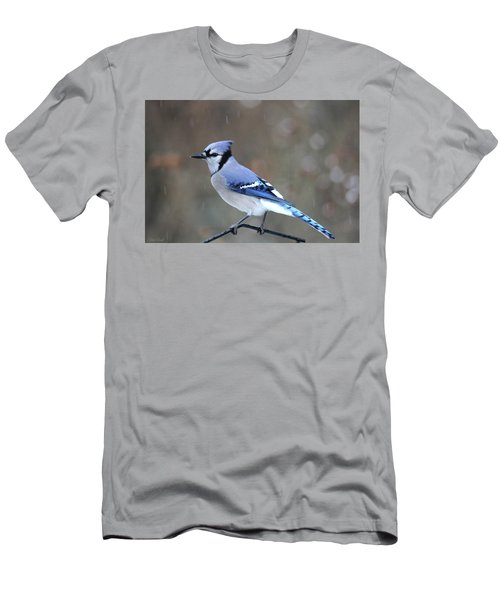 A Snowy Day With Blue Jay Men's T-Shirt (Athletic Fit)