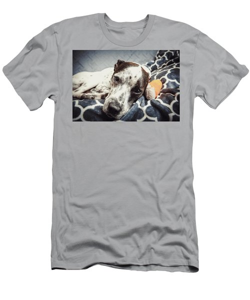 Abbey And Her Injured Paw Men's T-Shirt (Athletic Fit)