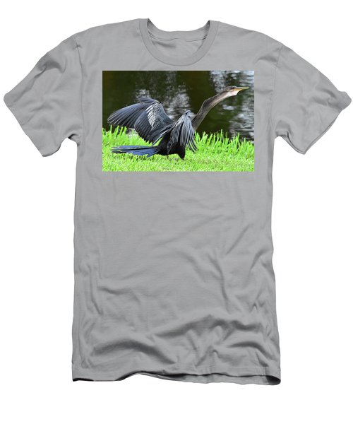 Anhinga Surprise Men's T-Shirt (Athletic Fit)