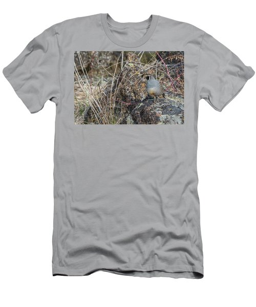 Men's T-Shirt (Athletic Fit) featuring the photograph B53 by Joshua Able's Wildlife