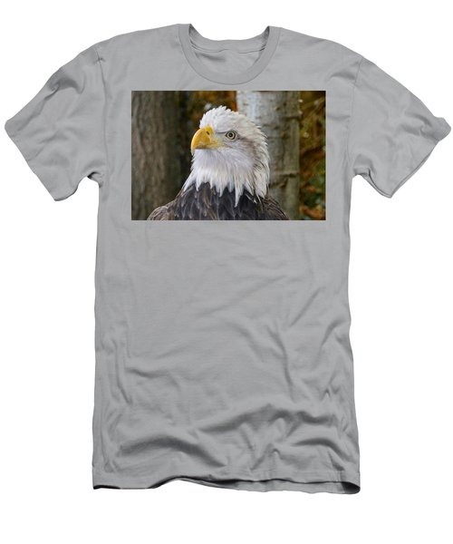 Bald Eagle Portrait Men's T-Shirt (Athletic Fit)