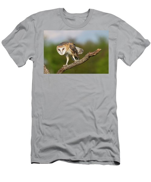 Barn Owl 5151801 Men's T-Shirt (Athletic Fit)