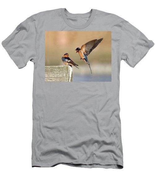 Barn Swallow Conversation Men's T-Shirt (Athletic Fit)