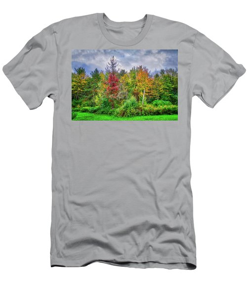 Men's T-Shirt (Athletic Fit) featuring the photograph Beauty In The Fall Forest by Lynn Bauer