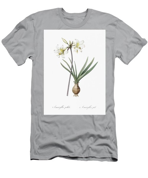 Belladonna Lily Illustration From Les Liliacees  1805  By Pierre Joseph Redoute  1759 1840  Men's T-Shirt (Athletic Fit)