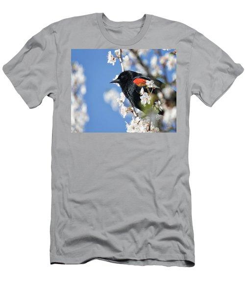 Blackbird In Spring Men's T-Shirt (Athletic Fit)
