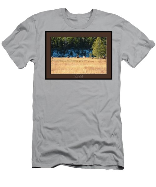 Men's T-Shirt (Athletic Fit) featuring the photograph Bull And His Babes Poster by Pete Federico