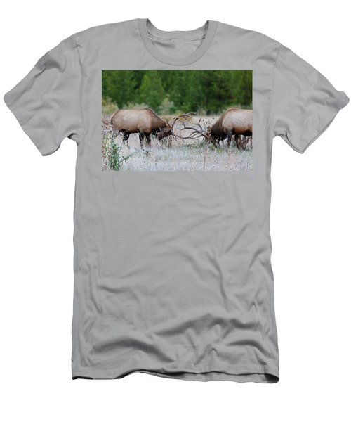 Bull Elk Battle Rocky Mountain National Park Men's T-Shirt (Athletic Fit)