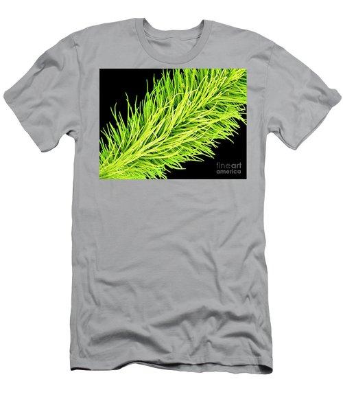 C016/0065 Men's T-Shirt (Athletic Fit)