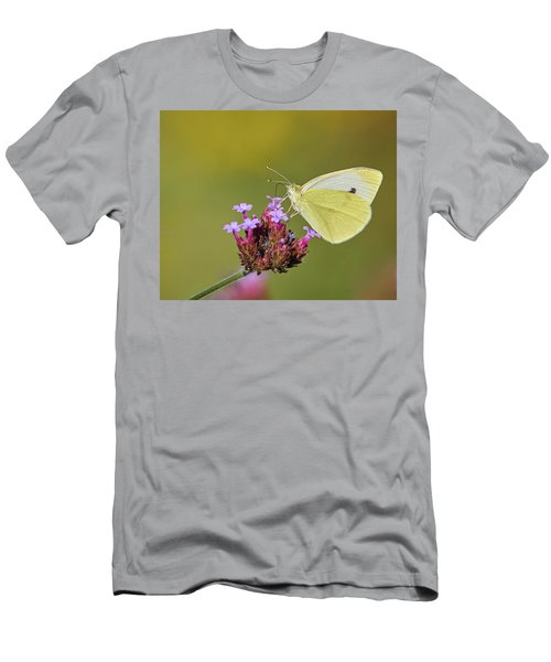 Cabbage White Butterfly Men's T-Shirt (Athletic Fit)
