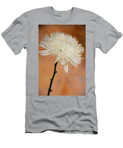 Chrysanthemum On Canvas Men's T-Shirt (Athletic Fit)
