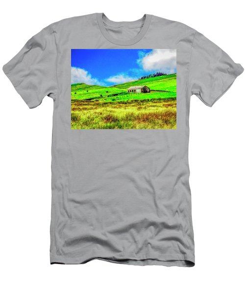Cows Grazing Men's T-Shirt (Athletic Fit)