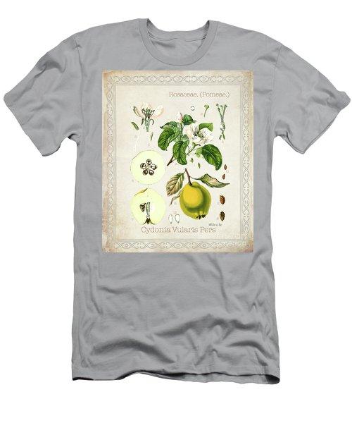 Cydonia Vularis Pers Men's T-Shirt (Athletic Fit)