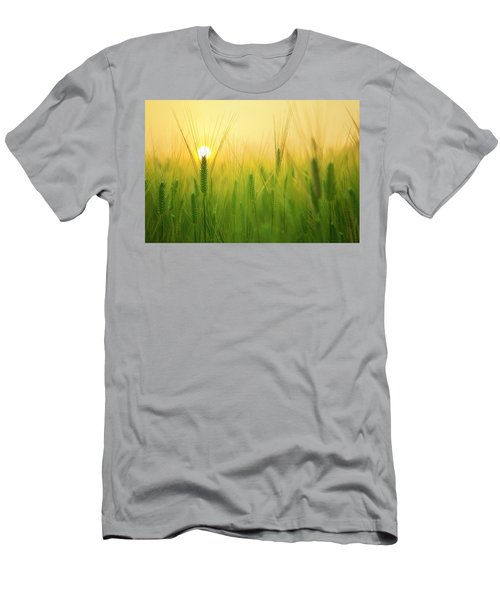 Dawn At The Wheat Field Men's T-Shirt (Athletic Fit)