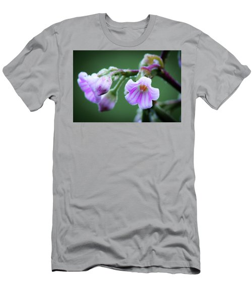 Dewy Dogbane #1 Men's T-Shirt (Athletic Fit)