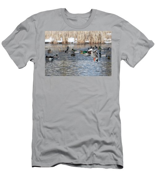 Drake Mallard 2019-1 Men's T-Shirt (Athletic Fit)